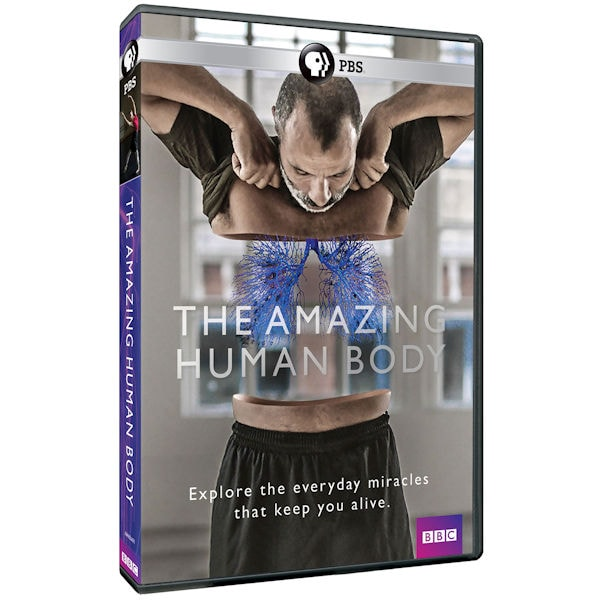 Purchase The Amazing Human Body