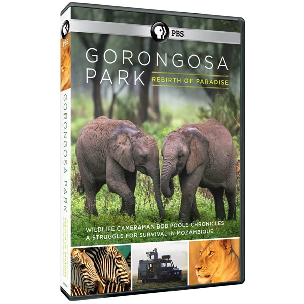 Purchase Gorongosa Park Rebirth of Paradise