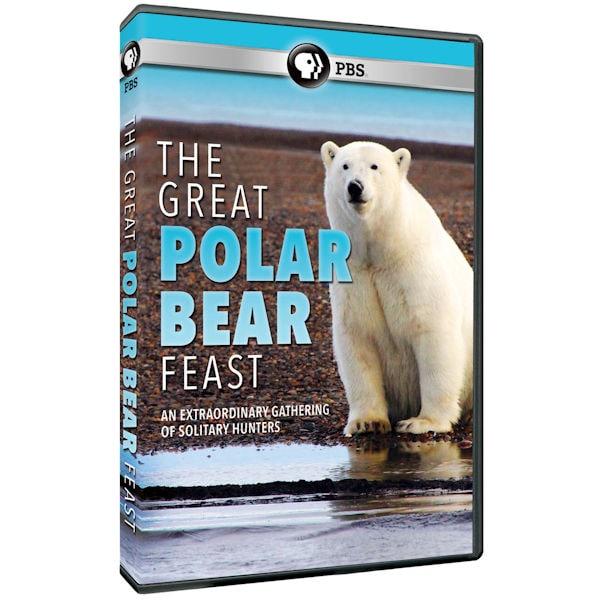 Purchase The Great Polar Bear Feast