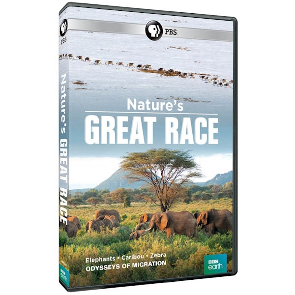 Purchase Nature's Great Race