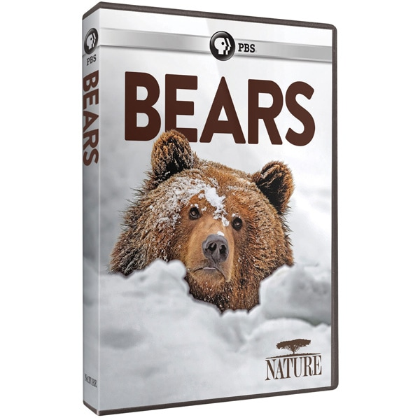 Bears DVD Cover Art