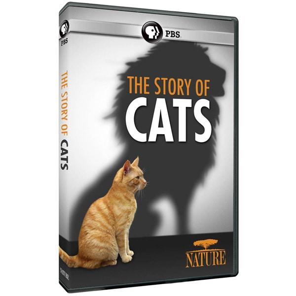 nature the story of cats dvd