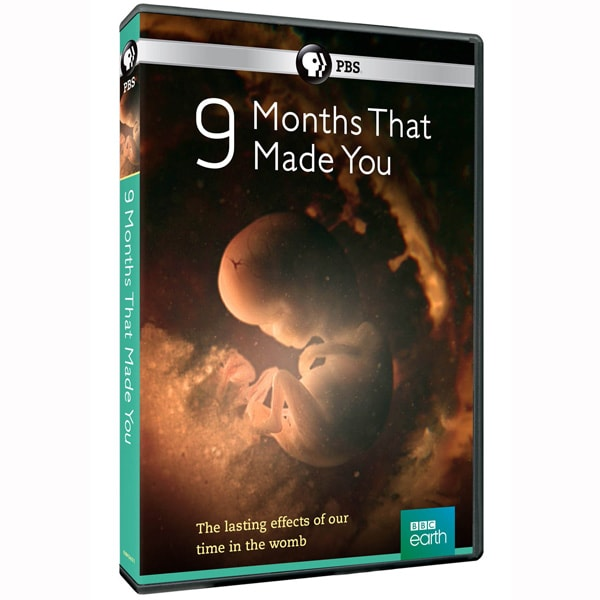 Purchase 9 Months That Made You