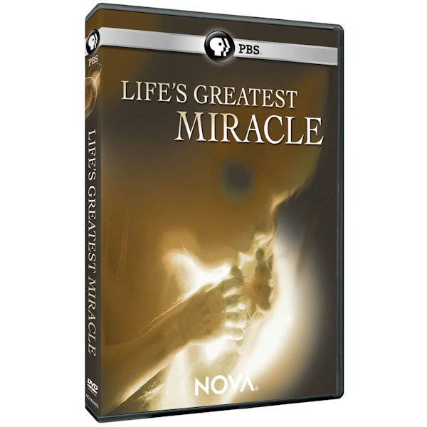 miracle of life summary