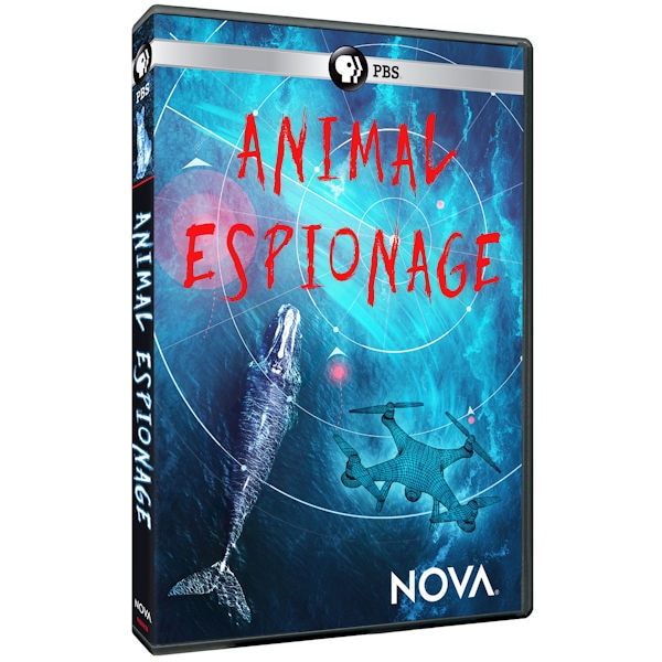 NOVA: Animal Espionage DVD