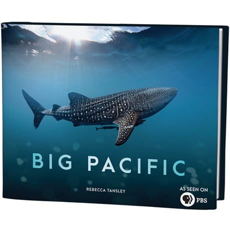 Big Pacific: Passionate, Voracious, Mysterious, Violent (Hardcover)
