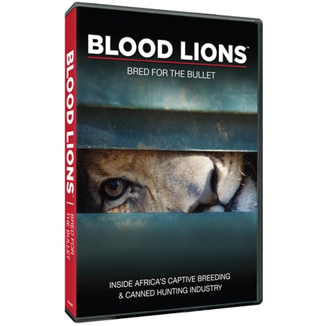Blood Lions DVD
