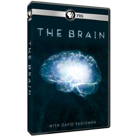 The Brain with David Eagleman DVD