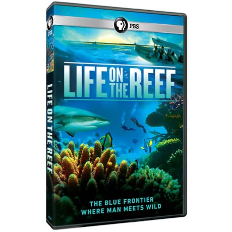 Life on the Reef DVD