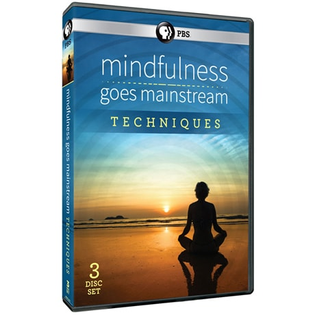 Mindfulness Goes Mainstream - Techniques DVD
