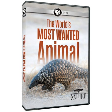 NATURE: The World's Most Wanted Animal DVD