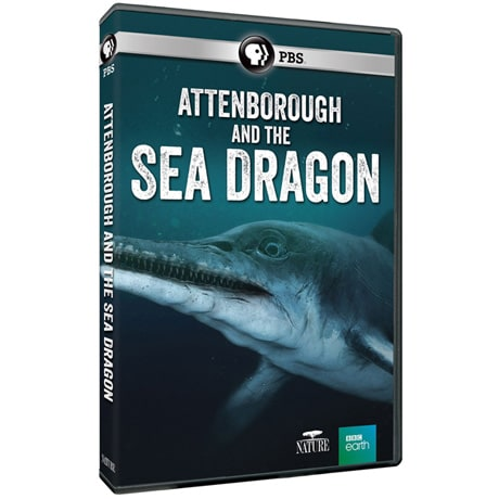 NATURE: Attenborough & The Sea Dragon DVD