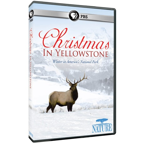 NATURE: Christmas in Yellowstone DVD