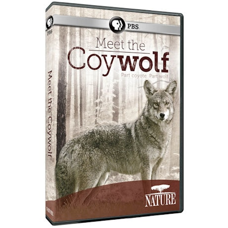 NATURE: Meet the Coywolf DVD