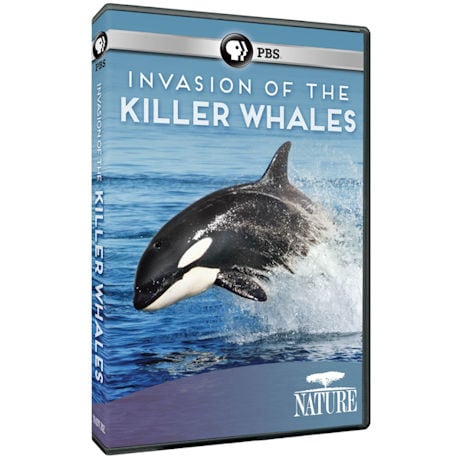 NATURE: Invasion of the Killer Whales DVD