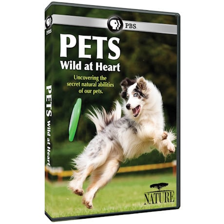 NATURE: Pets: Wild at Heart DVD