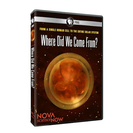 NOVA scienceNOW: Where Did We Come From? DVD