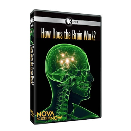 NOVA scienceNOW: How Does the Brain Work? DVD