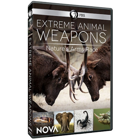 NOVA: Extreme Animal Weapons DVD