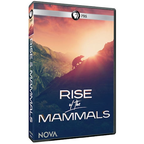 NOVA: Rise of the Mammals DVD