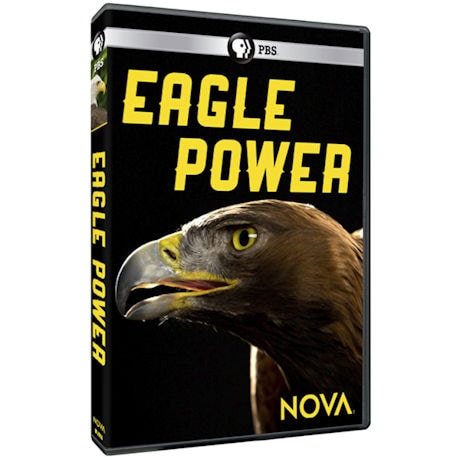 NOVA: Eagle Power DVD