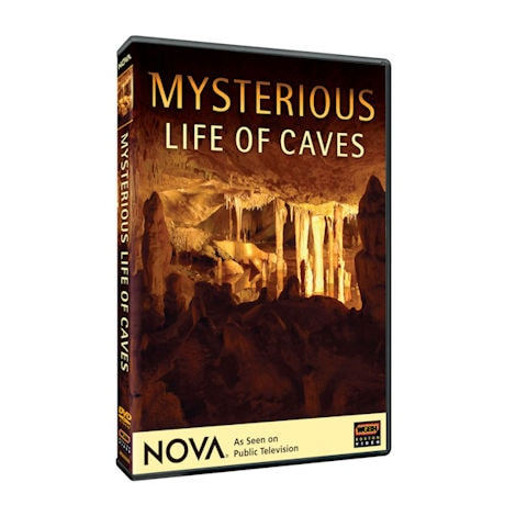 NOVA: Mysterious Life of Caves DVD