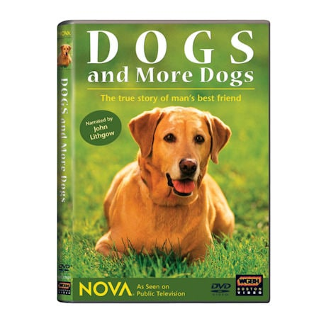 NOVA: Dogs and More Dogs DVD