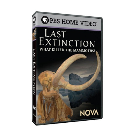 NOVA: Last Extinction: Megabeasts' Sudden Death DVD
