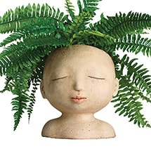 Product Image for Head of a Lady Indoor/Outdoor Resin Planter