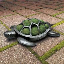 Product Image for Turtle Planter