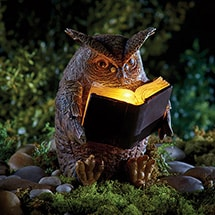 Product Image for Solar Reading Owl